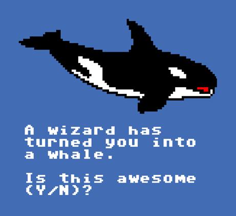 Shirt_whale